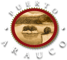 Puerto Arauco